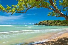 Praia escondida, Puerto Rico fotos de stock