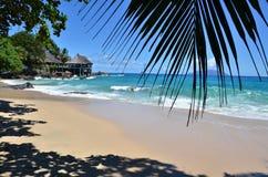 Praia exótica Imagens de Stock Royalty Free
