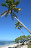 Praia exótica Foto de Stock Royalty Free