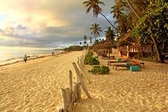 Praia exótica tropical na manhã ensolarada em Zanzibar imagem de stock royalty free