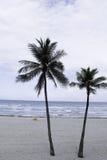 Praia FL de Hollywood Imagem de Stock