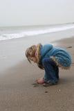 Praia fria Imagens de Stock