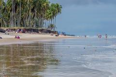 Praia gör Paiva, Pernambuco - Brasilien arkivfoton