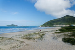 Praia gör Santinho, Florianopolis Royaltyfri Bild