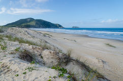 Praia gör Santinho, Florianopolis Fotografering för Bildbyråer