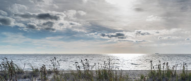 Praia, grama e nebuloso Imagem de Stock