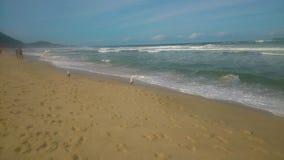 Praia gramocząsteczka Zdjęcia Stock