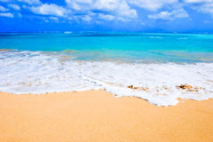 Praia havaiana imagens de stock royalty free