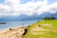Praia havaiana Fotos de Stock