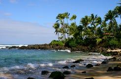 Praia havaiana Imagem de Stock