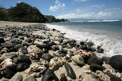 Praia havaiana calma imagem de stock royalty free