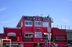Praia icónica Veneza Califórnia do músculo Imagem de Stock