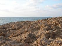 Praia ideal Fotos de Stock