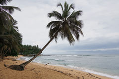 Praia Inhame, Sao-Tomé-et-Principe, Afrique photographie stock