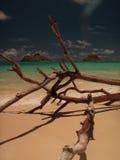 Praia lindo Havaí de Lanikai imagem de stock royalty free