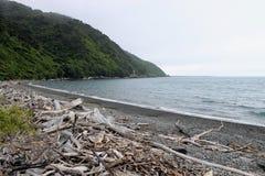 Praia litoral da ilha Imagens de Stock