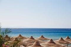 Praia, Mar Vermelho, guarda-chuvas, salas de estar do chaise, ramos da palma de data, África, tropical Fotos de Stock