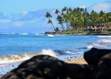 Praia, Maui, Havaí Fotos de Stock Royalty Free