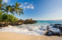 Praia maui tropical Havaí imagem de stock