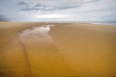Praia muito selvagem do oceano Imagens de Stock Royalty Free