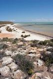 Praia na baía do tubarão Foto de Stock