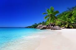 Praia na ilha de Praslin Fotografia de Stock
