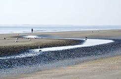 Praia na maré baixa Fotos de Stock