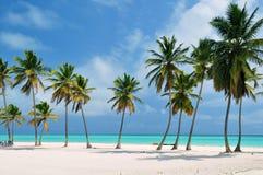 Praia na República Dominicana imagem de stock