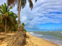 Praia na República Dominicana Paraíso tropical Imagens de Stock Royalty Free