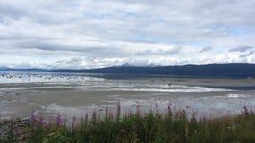 Praia Narvik Foto de Stock