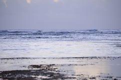 Praia no alvorecer Fotos de Stock