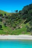 Praia no console de Waiheke Imagem de Stock Royalty Free