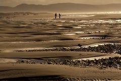 Praia no por do sol Fotos de Stock