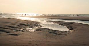 Praia no sepia Imagens de Stock