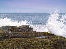 Praia noroeste pacífica Fotografia de Stock Royalty Free