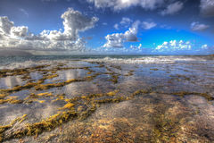 Praia norte Kaneohe Marine Corps Base Hawaii Imagem de Stock Royalty Free
