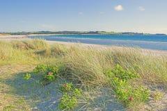 Praia norueguesa em um dia ensolarado fotos de stock