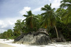 Praia nos Seychelles Fotografia de Stock