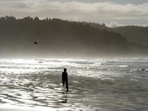 Praia Nova Zelândia de Hohope Fotografia de Stock