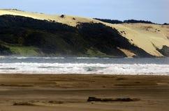 Praia noventa da milha - Nova Zelândia Fotos de Stock