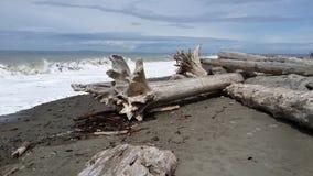 Praia pacífica da costa/oceano Fotos de Stock Royalty Free