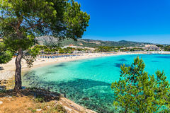 Praia Palmanova de Mallorca Imagem de Stock Royalty Free