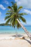 Praia, palmeira e água do mar tropicais bonitas na ilha Koh Phangan, Tailândia Fotografia de Stock
