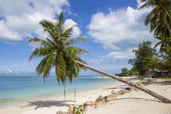 Praia, palmeira e água do mar tropicais bonitas na ilha Koh Phangan, Tailândia Fotografia de Stock Royalty Free