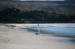 Praia, passos, surfista que anda afastado, Oceano Atlântico, África do Sul, Cape Town, fotos de stock royalty free