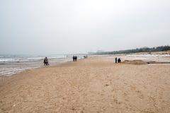 Praia pelo mar Báltico no inverno fotos de stock