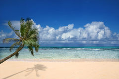 Praia perfeita em Havaí Imagem de Stock Royalty Free