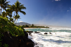 Praia perto de Haleiwa - costa norte Oahu da tartaruga, Havaí Foto de Stock Royalty Free