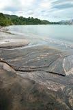 Praia poluída Imagens de Stock Royalty Free