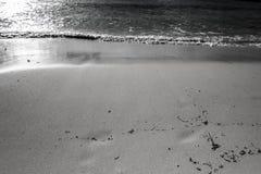 Praia preta & branca Fotos de Stock Royalty Free